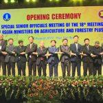 Hội nghị Special SOM – AMAF 2019